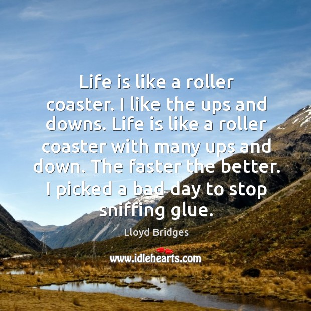 Life Is Like A Roller Coaster I Like The Ups And Downs Idlehearts