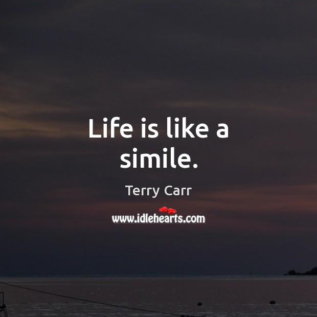Life is like a simile. Image