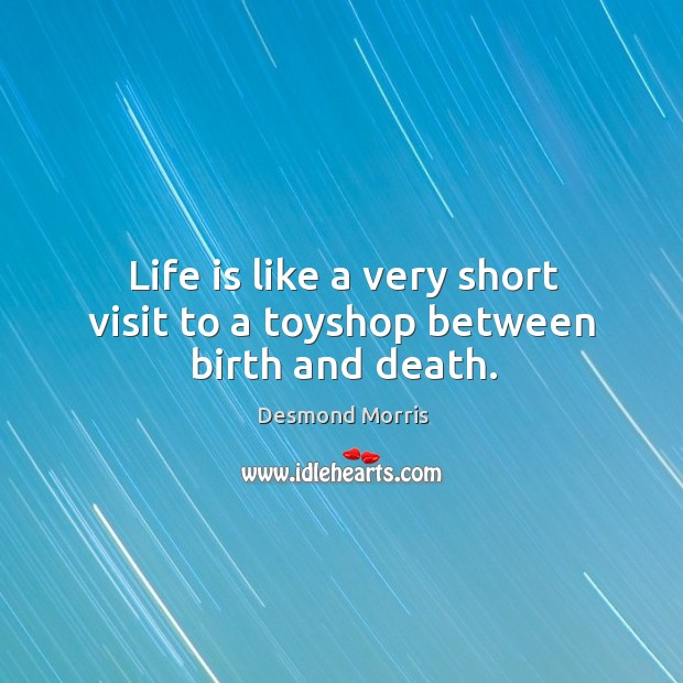 Life is like a very short visit to a toyshop between birth and death. Image