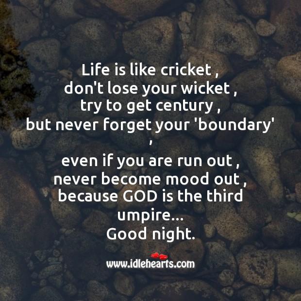 Life is like cricket Image