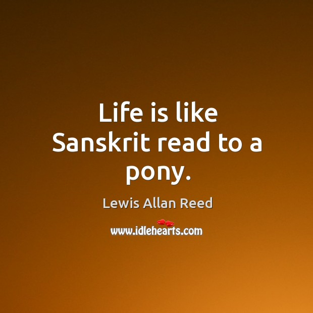 Life is like sanskrit read to a pony. Lewis Allan Reed Picture Quote