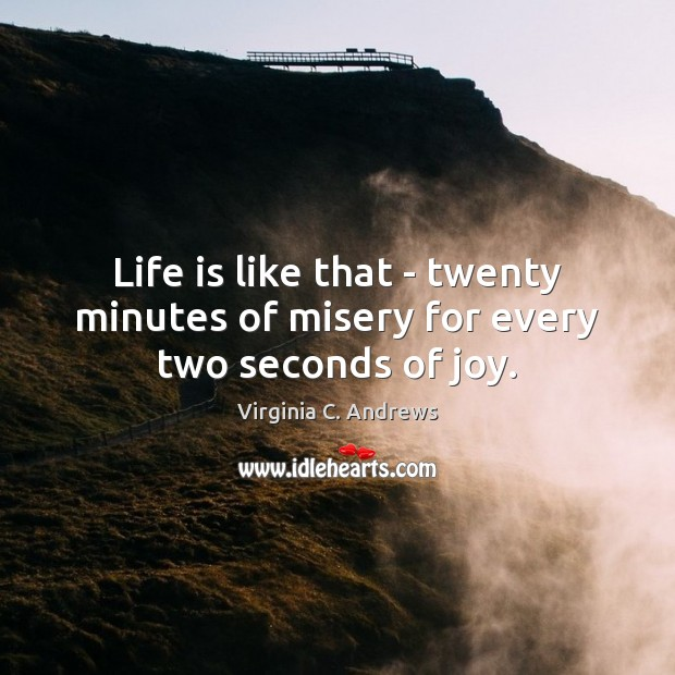Image, Life is like that – twenty minutes of misery for every two seconds of joy.