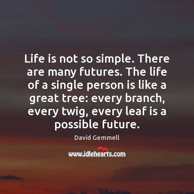 Life is not so simple. There are many futures. The life of Image
