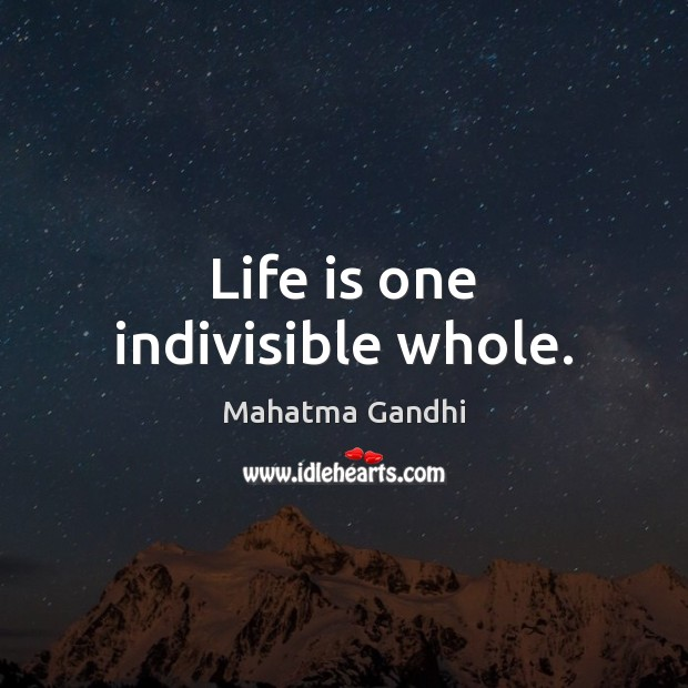 Life is one indivisible whole. Image