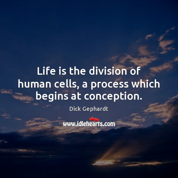 Life is the division of human cells, a process which begins at conception. Image