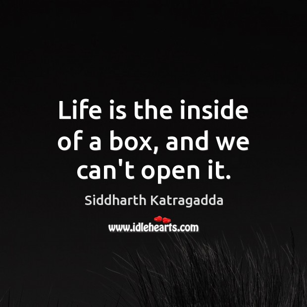 Life is the inside of a box, and we can't open it. Image