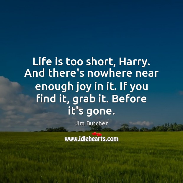 Life is too short, Harry. And there's nowhere near enough joy in Life is Too Short Quotes Image