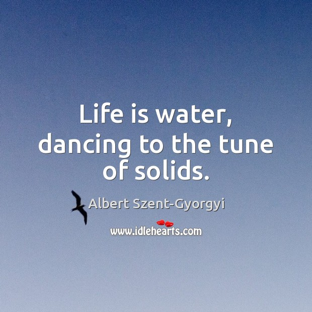 Life is water, dancing to the tune of solids. Image