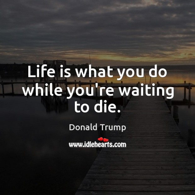 Life is what you do while you're waiting to die. Image