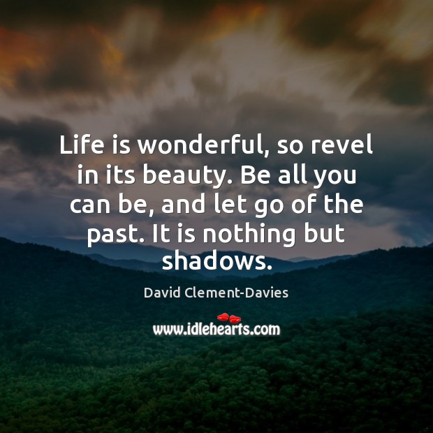 Life is wonderful, so revel in its beauty. Be all you can Image