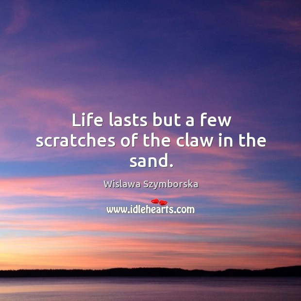 Life lasts but a few scratches of the claw in the sand. Wislawa Szymborska Picture Quote