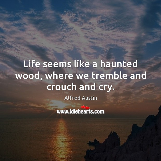 Image, Life seems like a haunted wood, where we tremble and crouch and cry.