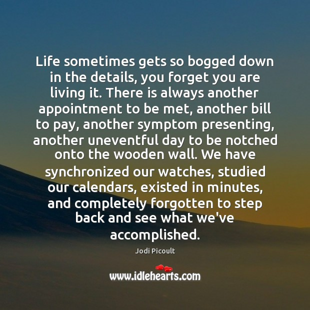 Life sometimes gets so bogged down in the details, you forget you Jodi Picoult Picture Quote