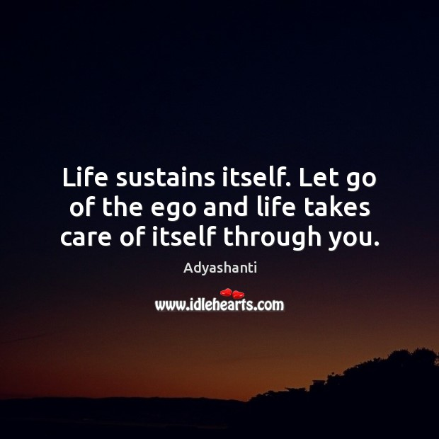 Image, Life sustains itself. Let go of the ego and life takes care of itself through you.