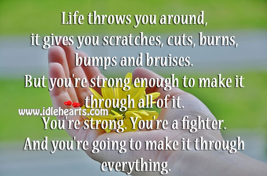 Life Throws You Around, It Gives You Scratches