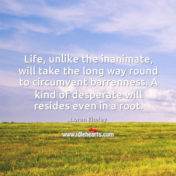 Life, unlike the inanimate, will take the long way round to circumvent Loren Eiseley Picture Quote