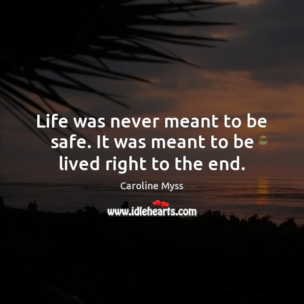 Life was never meant to be safe. It was meant to be lived right to the end. Stay Safe Quotes Image
