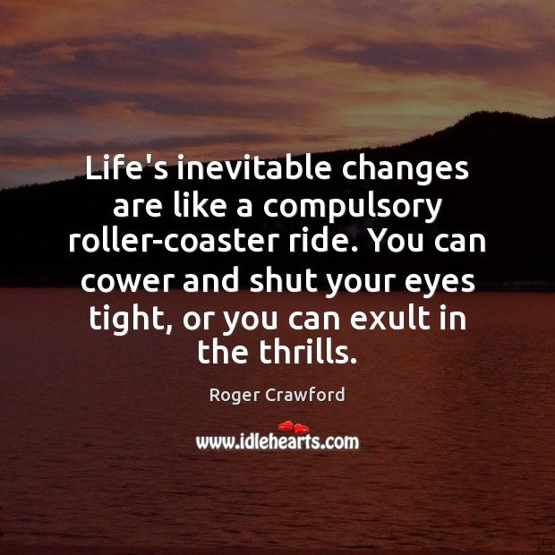 Life's inevitable changes are like a compulsory roller-coaster ride. You can cower Image