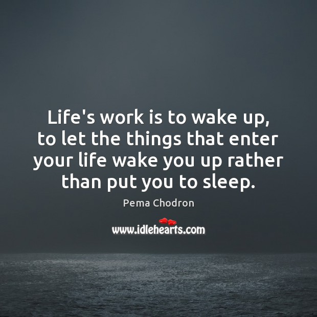 Image, Life's work is to wake up, to let the things that enter