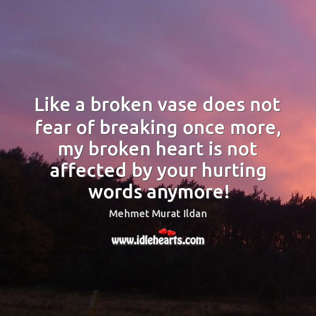 Like a broken vase does not fear of breaking once more, my Broken Heart Quotes Image