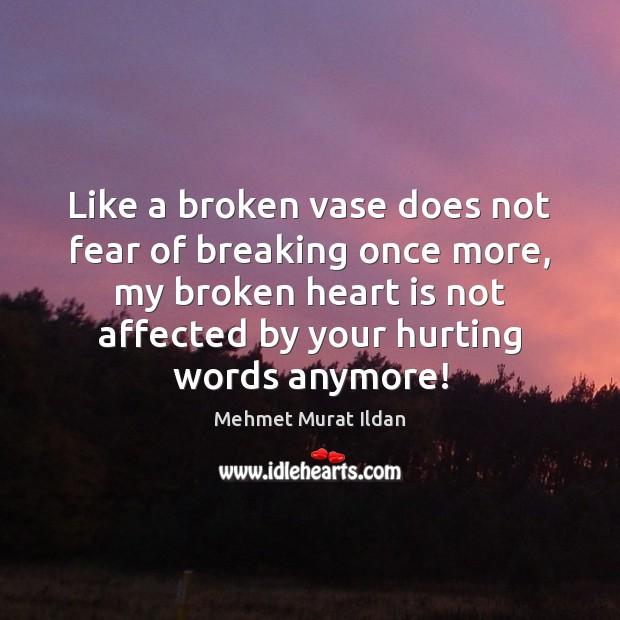 Like a broken vase does not fear of breaking once more, my Mehmet Murat Ildan Picture Quote