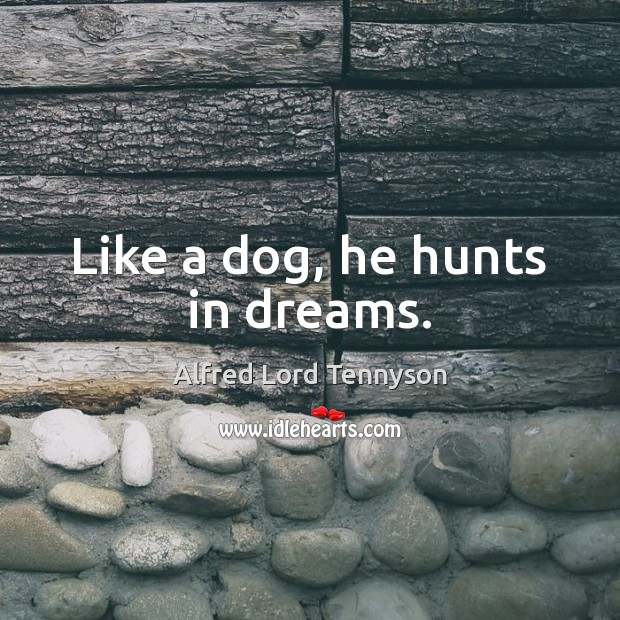 Image, Like a dog, he hunts in dreams.
