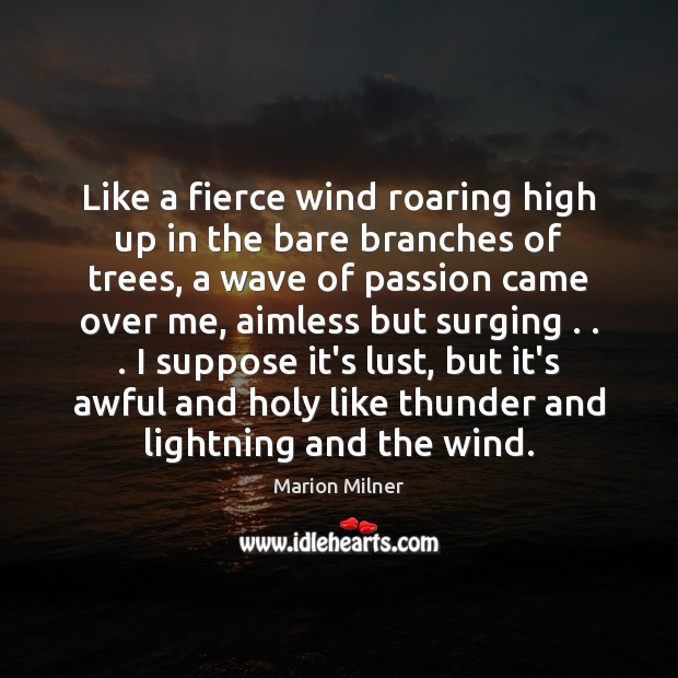 Image, Like a fierce wind roaring high up in the bare branches of