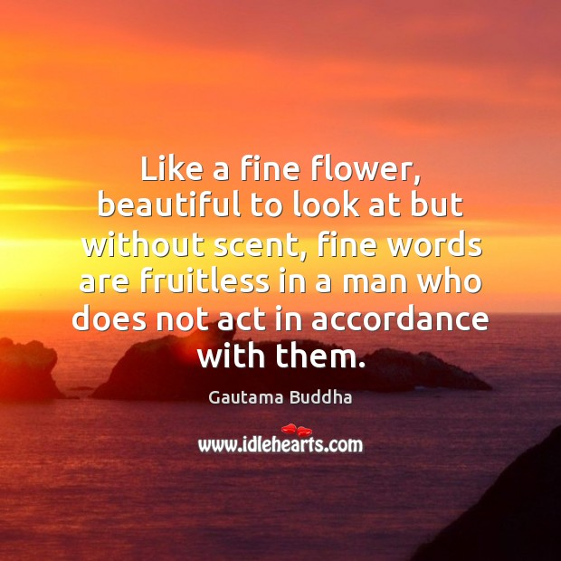 Like a fine flower, beautiful to look at but without scent, fine Image