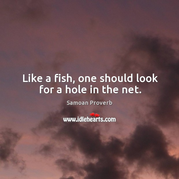 Like a fish, one should look for a hole in the net. Samoan Proverbs Image