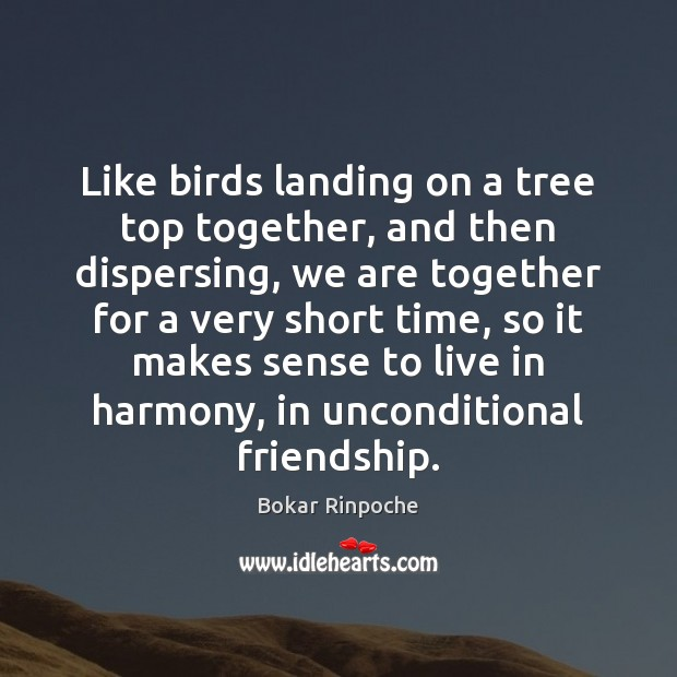 Image, Like birds landing on a tree top together, and then dispersing, we