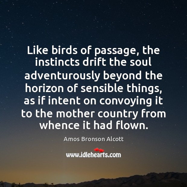 Image, Like birds of passage, the instincts drift the soul adventurously beyond the
