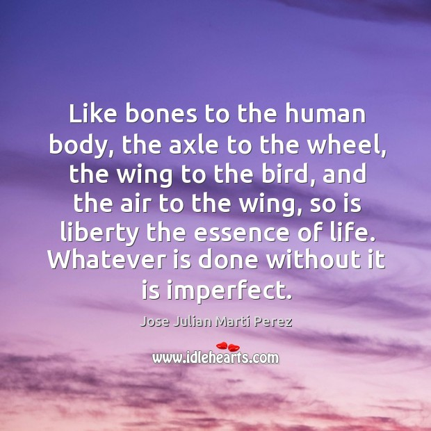 Like bones to the human body, the axle to the wheel, the wing to the bird, and the air Jose Julian Marti Perez Picture Quote