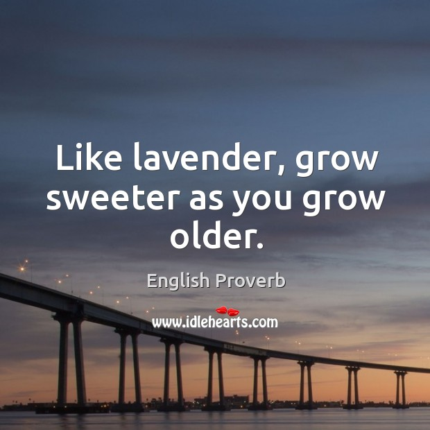 Image, Like lavender, grow sweeter as you grow older.