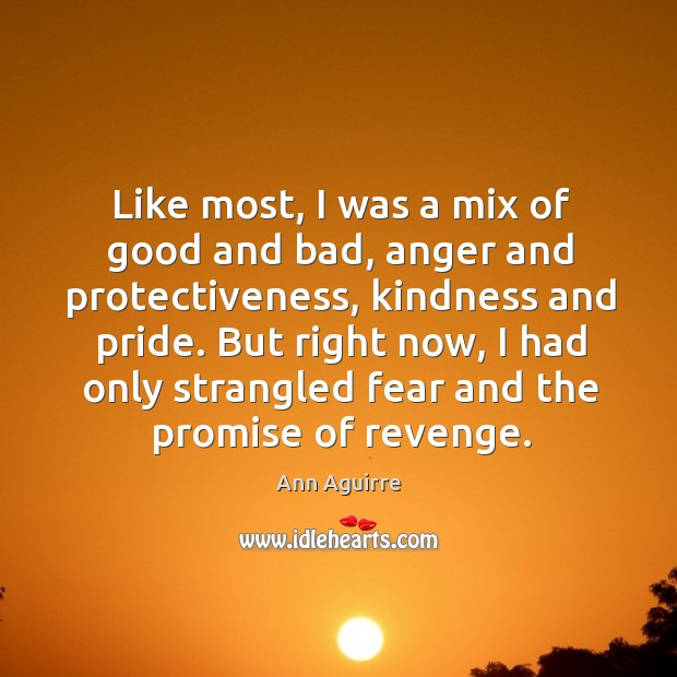 Like most, I was a mix of good and bad, anger and Image