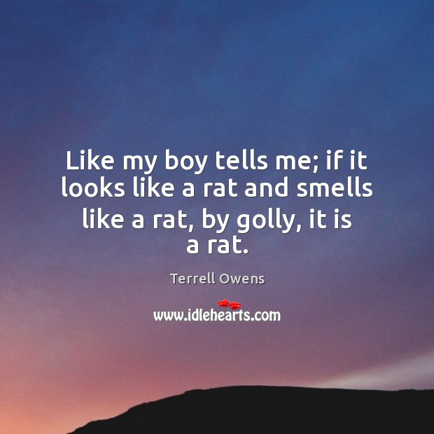 Like my boy tells me; if it looks like a rat and smells like a rat, by golly, it is a rat. Terrell Owens Picture Quote