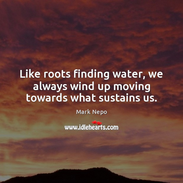 Like roots finding water, we always wind up moving towards what sustains us. Mark Nepo Picture Quote