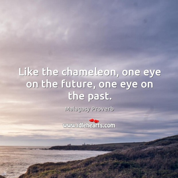 Like the chameleon, one eye on the future, one eye on the past. Malagasy Proverbs Image