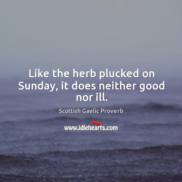 Like the herb plucked on sunday, it does neither good nor ill. Scottish Gaelic Proverbs Image