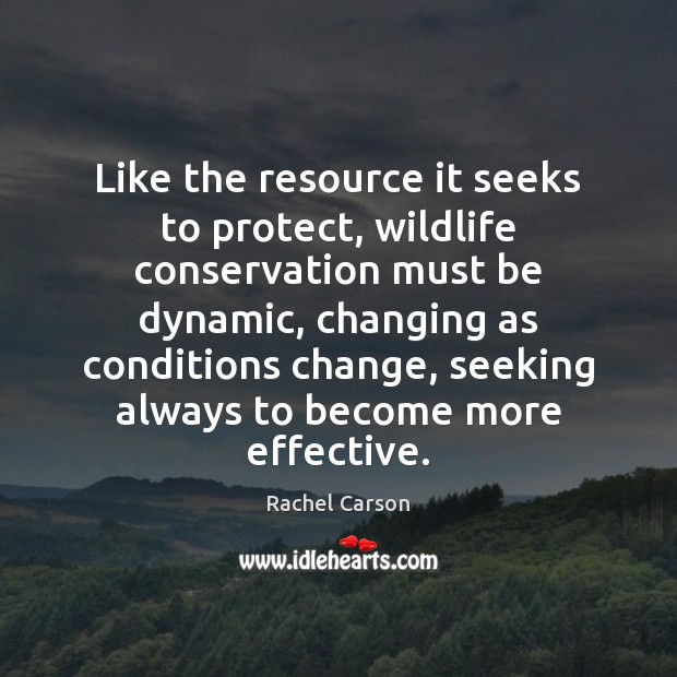 Like the resource it seeks to protect, wildlife conservation must be dynamic, Image