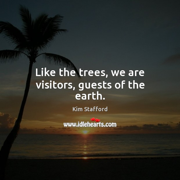 Image, Like the trees, we are visitors, guests of the earth.
