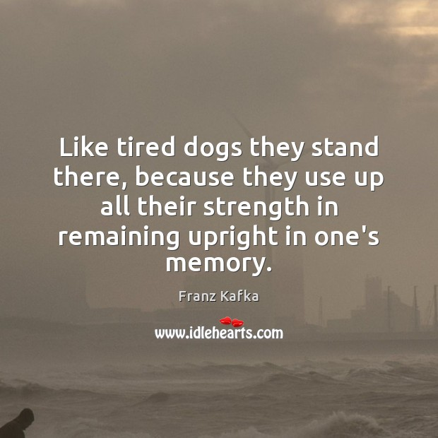 Like tired dogs they stand there, because they use up all their Franz Kafka Picture Quote