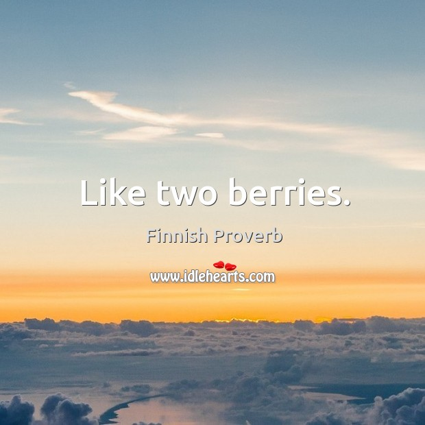 Like two berries. Finnish Proverbs Image