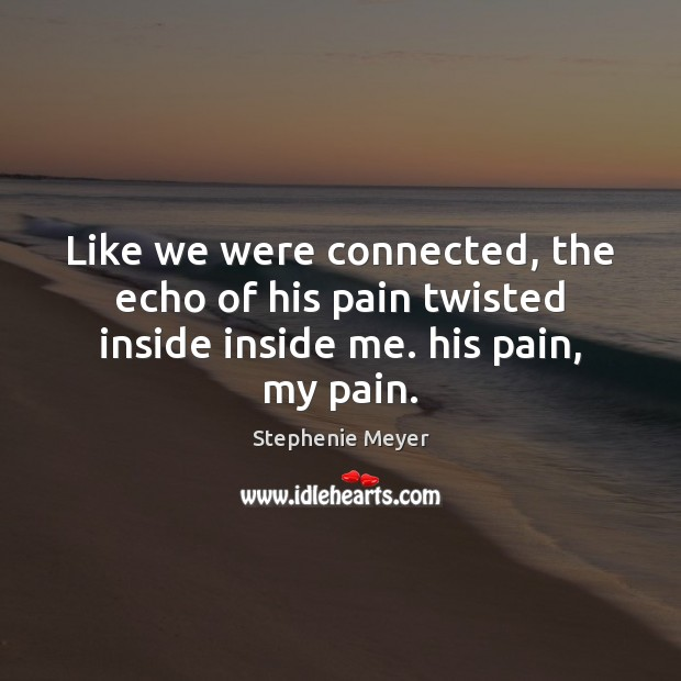 Like we were connected, the echo of his pain twisted inside inside me. his pain, my pain. Stephenie Meyer Picture Quote