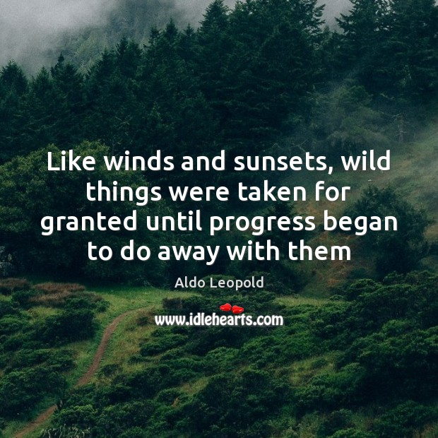 Image, Like winds and sunsets, wild things were taken for granted until progress
