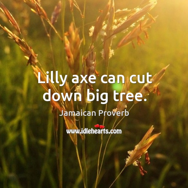 Lilly axe can cut down big tree. Jamaican Proverbs Image