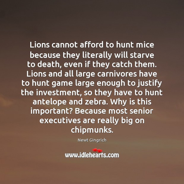 Lions cannot afford to hunt mice because they literally will starve to Image