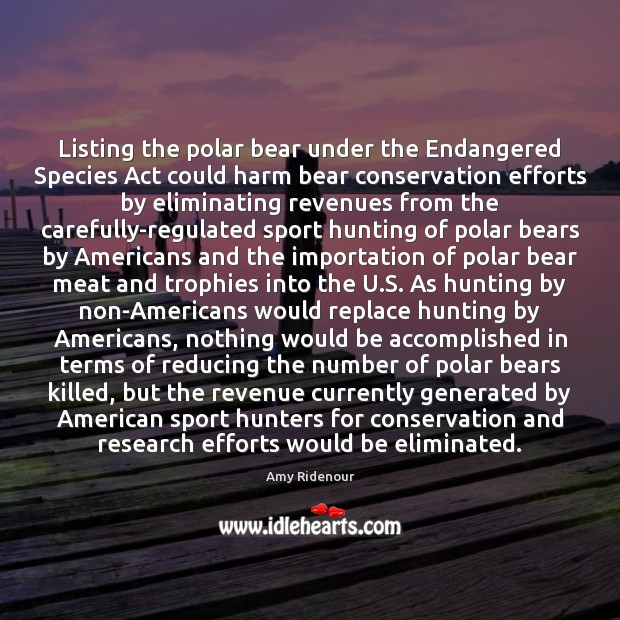 Image, Listing the polar bear under the Endangered Species Act could harm bear