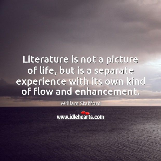 Image, Literature is not a picture of life, but is a separate experience