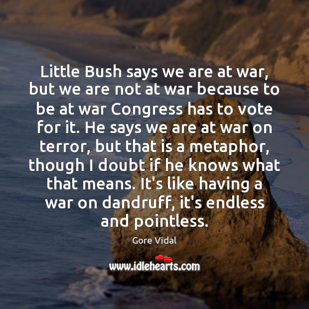 Little Bush says we are at war, but we are not at Image