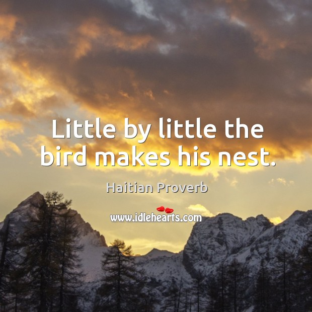 Little by little the bird makes his nest. Haitian Proverbs Image